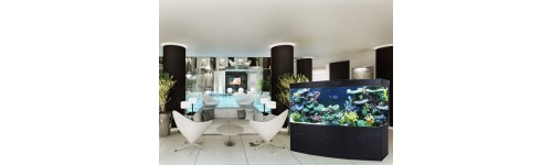 Aquariums de luxe