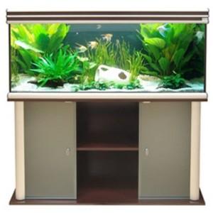 Evasion 150x50x70cm hêtre 470 Litres avec meuble