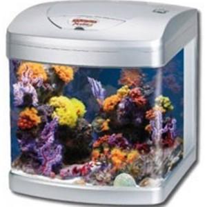 Aquarium x-cube 40l gris