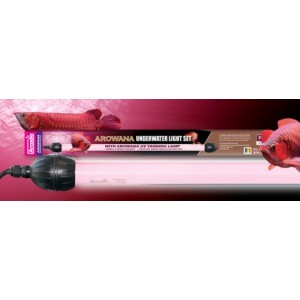 Boitier + lampe 30w cable 1.5m arowana arcadia