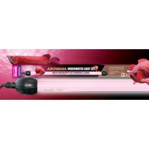 Boitier + lampe 30w cable 8m arowana arcadia